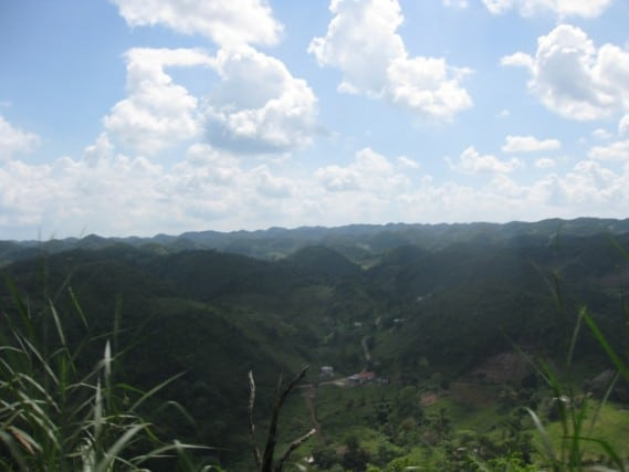 Looking out over the Blue Mountains - Jamaica