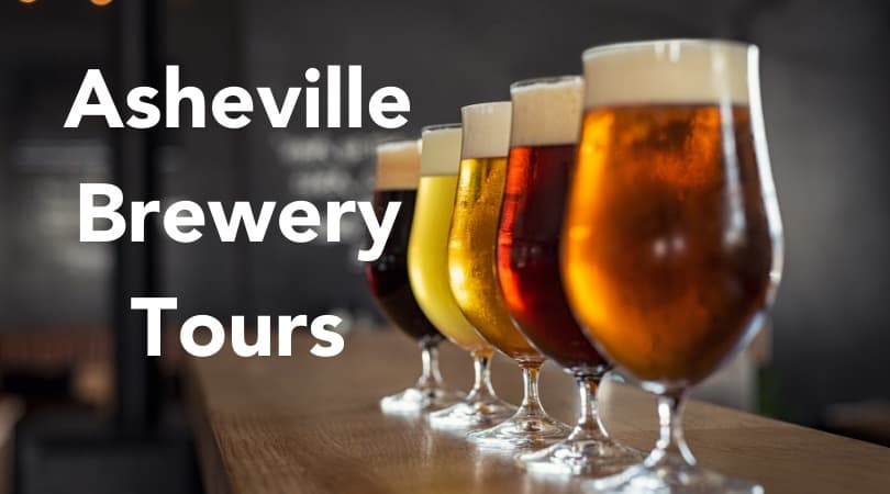 Flight of beer in Asheville, Brewery tours in asheville north carolina