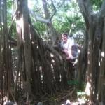 Geocaching Road Trip in the Florida Keys