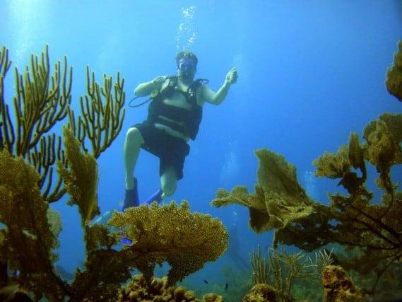 Scuba, dive, Scuba diving, Paa Mul, Mexico, sea turtle, first time, snorkel, trainer, water, scubamex, dive center, turtle, peanuts or pretzels, travel, bucket list, geocaching