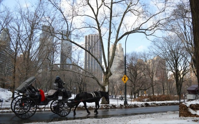 Take a carriage ride through Central Park in New York City