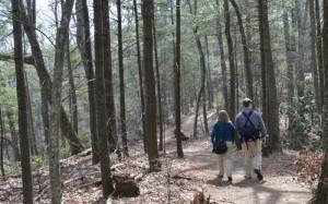 Geocaching, Blue Ridge Parkway, Geocache, Garmin, GPS, Asheville, NC, Asheville NC, Peanuts or Pretzels, Cache, Explore, Adventure, National Park