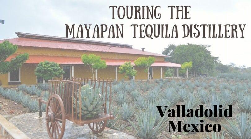 Mayapan Tequila Distillery – Valladolid, Mexico
