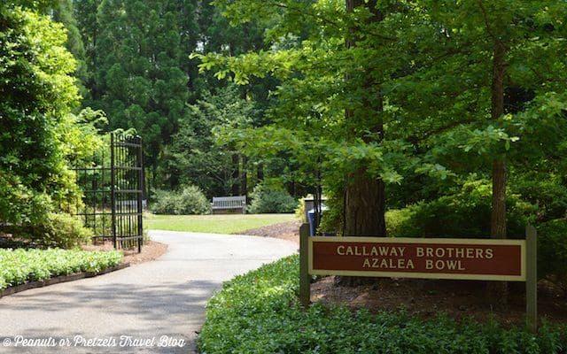Azaela Bowl Entrance