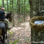 Geocaching on Horseback with Roosevelt Riding Stables in Pine Mountain, GA