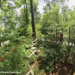 TreeTop Family Adventure – Callaway Gardens in Pine Mountain, Georgia