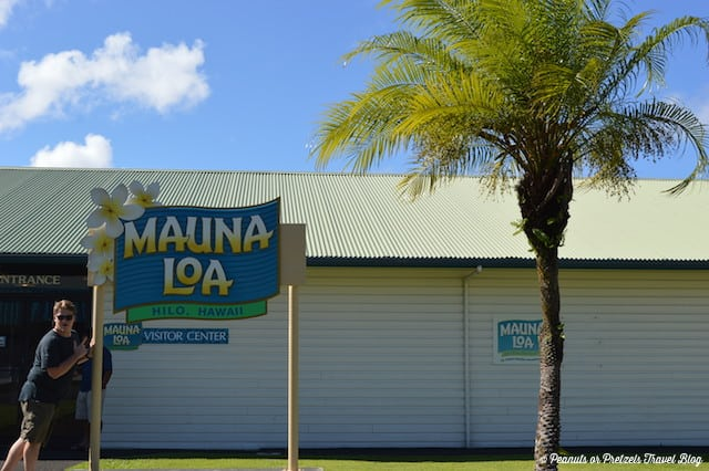 Mmmmm, macadamia nuts at the Mauna Loa factory near Hilo, Hawaii
