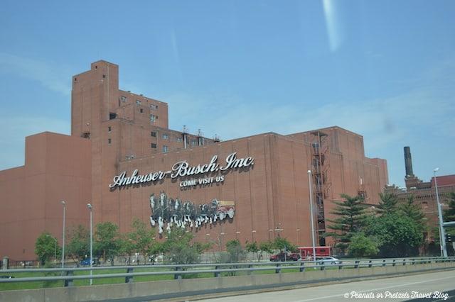 St. Louis Brew