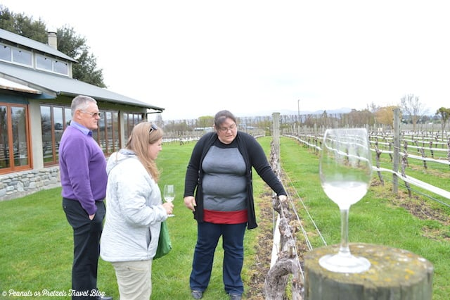 Getting the scoop on the vines from our hostess at Forrest Winery, Marlborough New Zealand