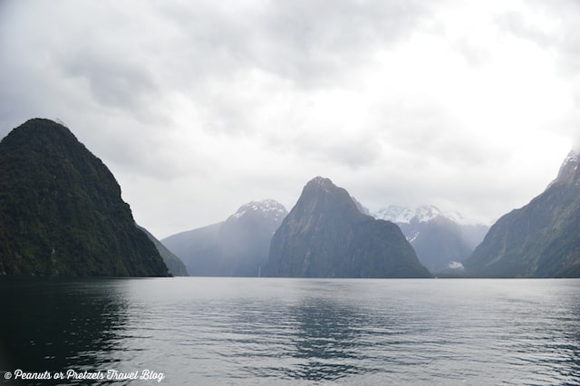 milford sound, milford sound new zealand, cruise milford sound, boat tours of milford sound, things to do in new zealand