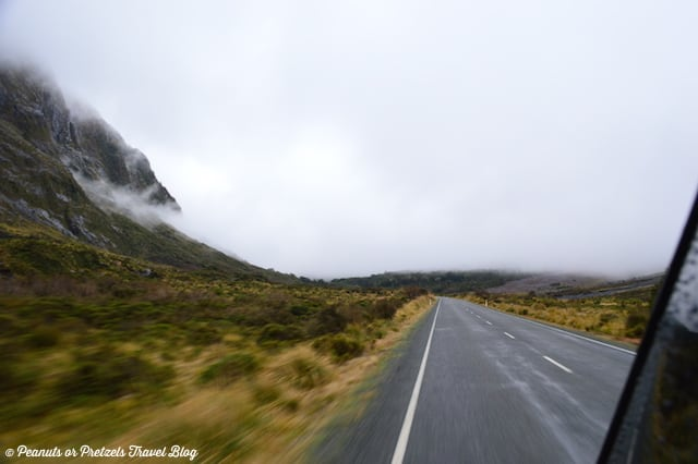Road to Milford Sound 1
