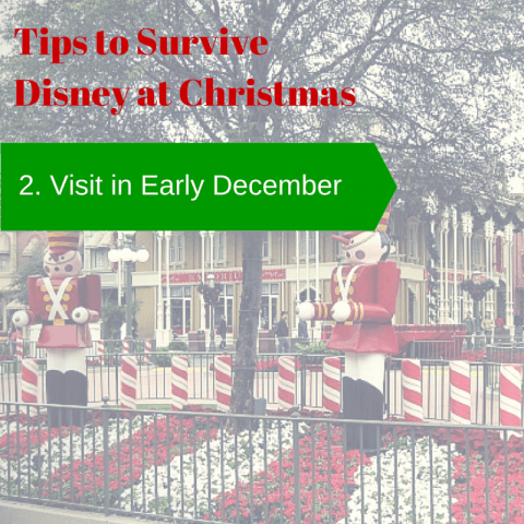 2. visit early december