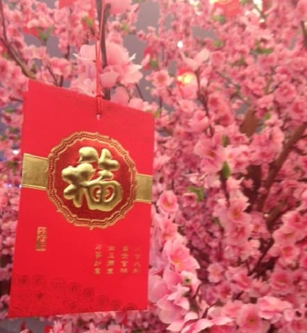 Chinese Holidays, Chinese New Year, Chinese Festivals, Chinese Spring Festival, Chinese Holidays, China Holidays, Chinese Calendar, Chinese New Year, Chinese Holidays, May Day, Dragon Boat Festival, lantern festival, moon cakes, mid autumn festival, spring festival
