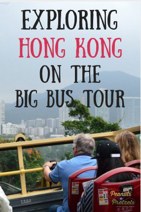 Big Bus Tour - Pin