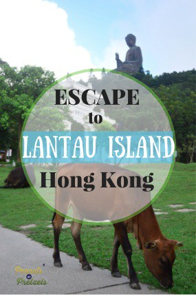 Escape to Lantau - Pin