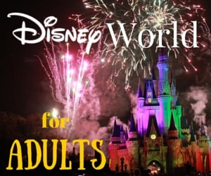 So many things to do at Disney World for Adults!