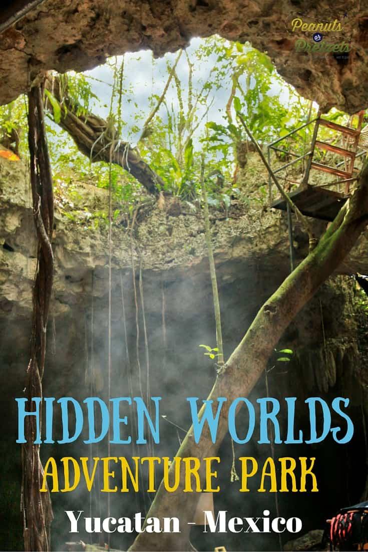 Hidden Worlds - Pin