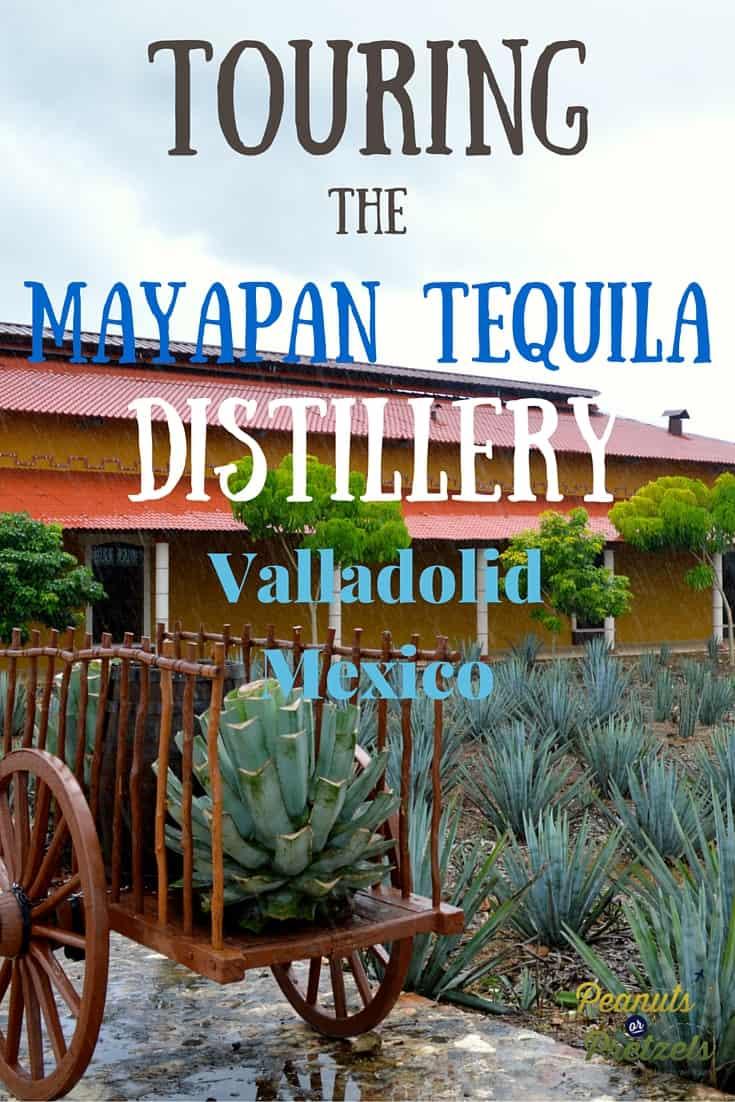Touring Mayapan Tequila - Pin