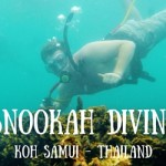 Scuba Diving Made Easy – Check out Snookah (Snuba) Diving in Koh Samui!