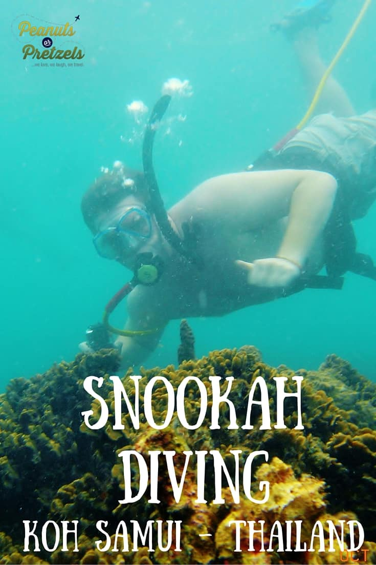 Snookah Diving - Pin