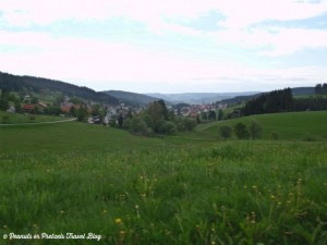 view of wildflowers and german villages during road trip