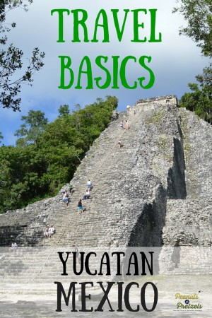 Travel Basics - Pin