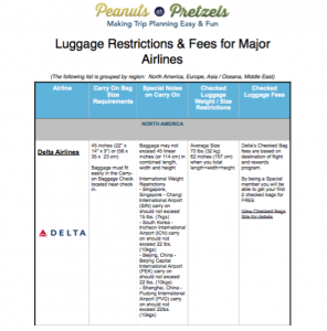 Airline Baggage Rules & Restrictions PDF