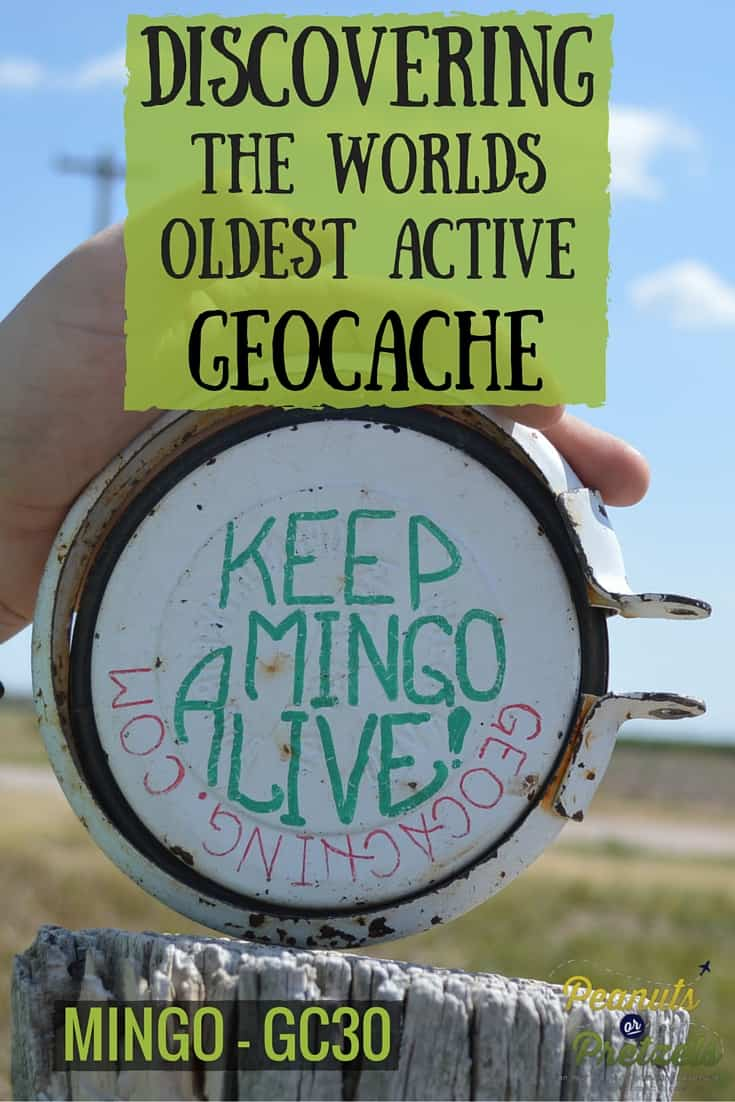 Discovering Mingo - Pin