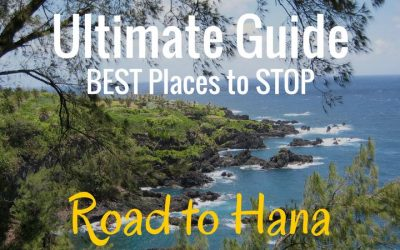 Ultimate Guide to the Road to Hana Stops