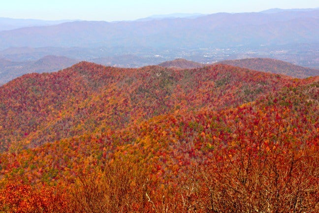 brasstown-bald-in-autumn