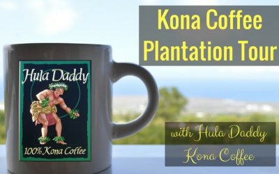 Our Kona Coffee Plantation Tour with Hula Daddy Hawaiian Coffee