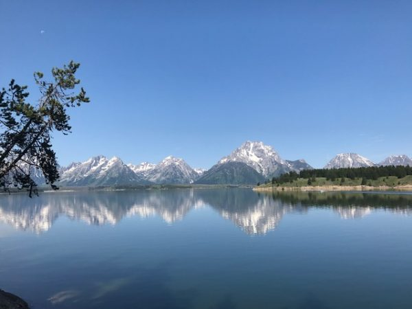 jackson lake grand teton national park