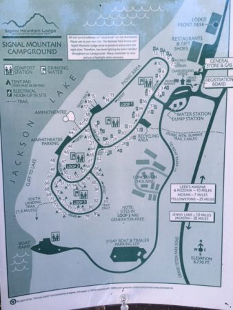 signal mountain campground map grand tetons