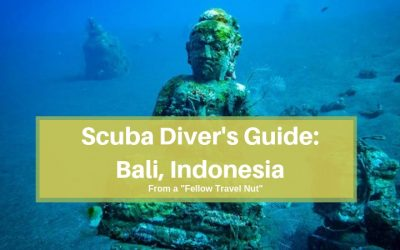The Scuba Diver's Complete Guide to Diving Bali, Indonesia