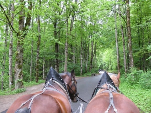 real cinderella castle, horse drawn carriage, bavaria germany