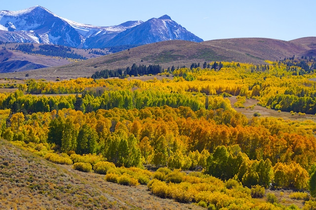 Eastern Sierra, Most Beautiful Places to See in California