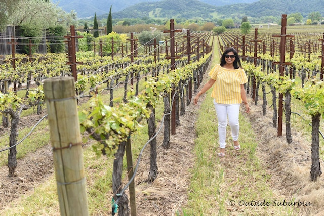 Napa Valley, Most Beautiful Places to See in California