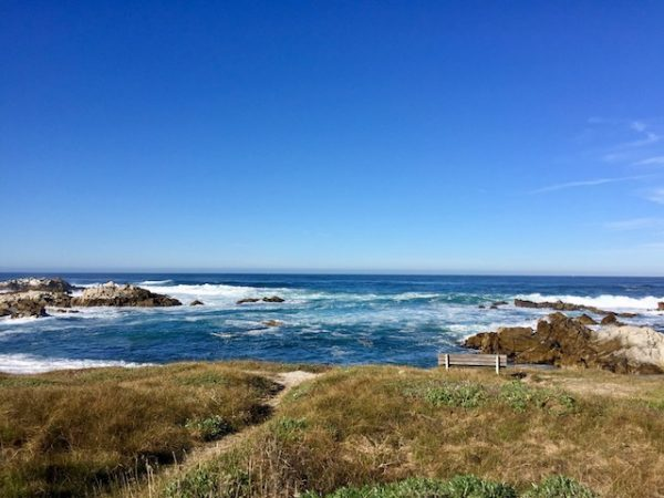 Pacific Grove, Most Beautiful Places to See in California