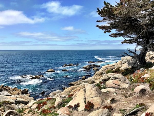Pebble Beach, Most Beautiful Places to See in California