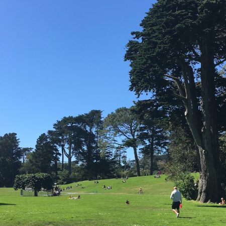 Golden Gate Park,
