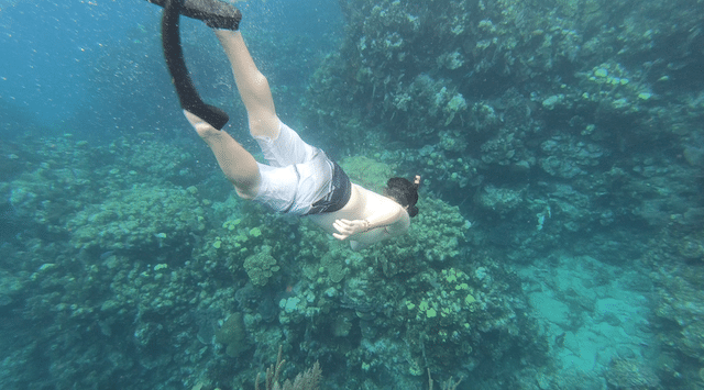Scuba Diving in Honduras