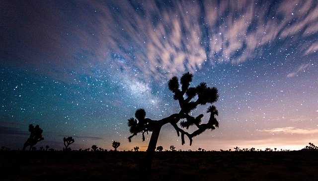 joshua tree national park, cool places in California