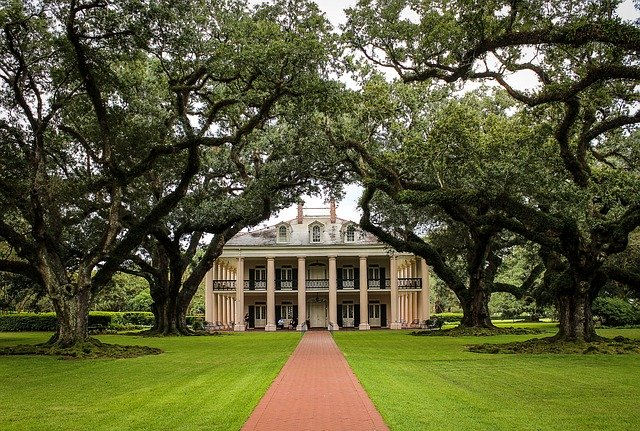 oak alley, things to do in new orleans