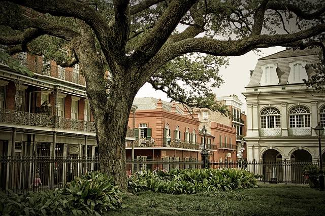 new orleans french quarter architecture from park with trees