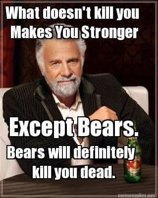 funny camping meme what doesn't kill you makes you strong, except bears they will kill you dead