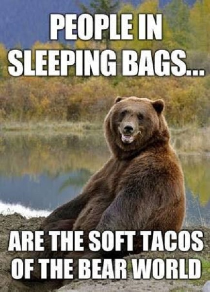 funny camping meme of bear at lake laughing about people in sleeping bags are like soft tacos