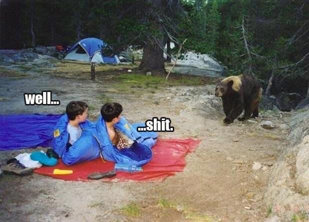 funny camping meme of kids in sleeping bags waking up to bear caption well... shit.