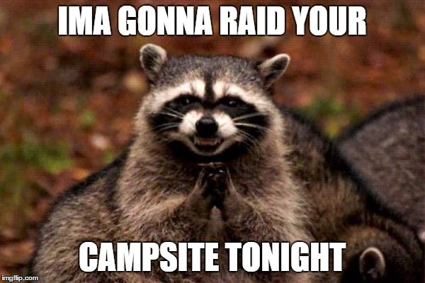 funny camping meme with raccoon going to raid the campsite